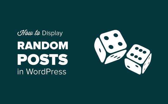 Вывод случайных записей в WordPress